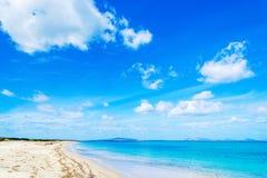 Fiume Santo海岸线在春天 免版税图库摄影