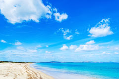 Fiume Santo shoreline in spring Royalty Free Stock Photography
