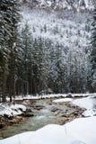 Fiume scenico di inverno di Snowy che entra nelle alpi julian delle montagne, Slovenia Immagine Stock