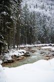 Fiume scenico di inverno di Snowy che entra nelle alpi julian delle montagne, Slovenia Fotografia Stock