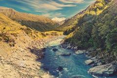 Fiume selvaggio della Nuova Zelanda Fotografie Stock Libere da Diritti