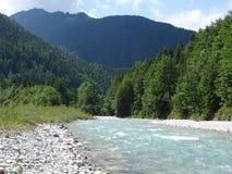 Fiume selvaggio Rißbach Tirolo, Austria Immagini Stock Libere da Diritti