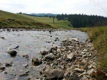Fiume silenzioso in Padis, Romania Immagini Stock
