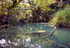 Fiume - Sillans-La-cascata - la Francia Fotografia Stock Libera da Diritti