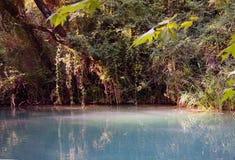 Fiume - Sillans-La-cascata - la Francia Immagine Stock Libera da Diritti