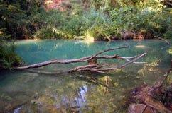 Fiume - Sillans-La-cascata - la Francia Fotografia Stock