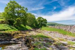 Fiume Skirfare, vicino a Litton, North Yorkshire, Inghilterra, Regno Unito fotografia stock libera da diritti
