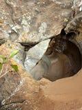 Fiume Sudafrica di Blyde delle buche di fortuna del ` s di Bourke fotografia stock libera da diritti