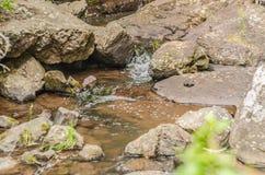 Fiume sulle rocce, nelle montagne a mezzogiorno fotografia stock