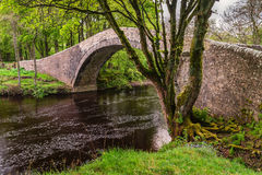 Fiume Swale sotto il ponte di Ivelet immagini stock libere da diritti