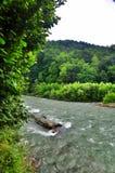 Fiume tempestoso Malaya Laba al piede delle montagne di Caucaso immagine stock