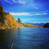 Fiume a testa piatta Montana fotografia stock libera da diritti