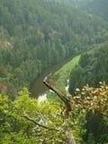 Fiume Thaya del canyon Immagini Stock Libere da Diritti