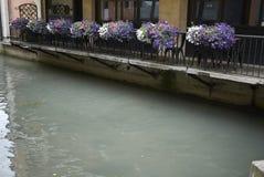 Fiume a Treviso immagini stock