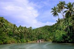 Fiume tropicale della giungla Immagini Stock