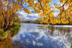 Fiume in una foresta deliziosa di autunno al giorno soleggiato Immagine Stock