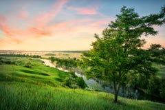 Fiume in valle con erba verde sotto il cielo di alba fotografia stock libera da diritti