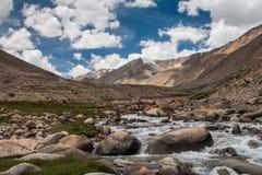Fiume in valle di Nubra fotografie stock libere da diritti