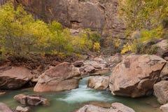 Fiume vergine scenico Zion National Park Utah nella caduta fotografie stock libere da diritti