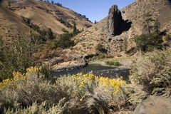 Fiume Washington di Yakima Immagine Stock