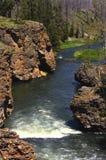 Fiume in Yellowstone Immagine Stock