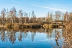 Fiumi e foreste dell'alta marea senza foglie nella molla in anticipo, un chiaro giorno soleggiato Fotografia Stock Libera da Diritti