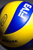 FIVB volleyballdetail Royalty-vrije Stock Afbeelding
