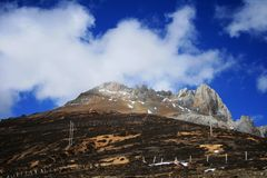 Five Alpine Royalty Free Stock Images
