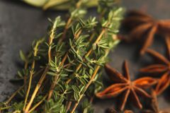 Anise stars and two sprigs of thyme. Five anise stars, two sprigs of thyme on old dark background. Selective focus Stock Images
