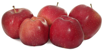 Five Apples Royalty Free Stock Images