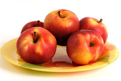 Five apples. Five big fresh red apples on a plate Stock Photos