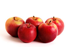 Five apples. Five big fresh red apples on a white background Stock Photography