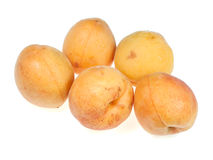 Five of apricots Stock Photo