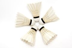 Five  badminton  shuttlecocks Stock Images