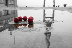 Five red basketballs on the street with reflection royalty free stock images