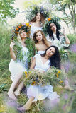 Five beautiful girls in wreaths Royalty Free Stock Images