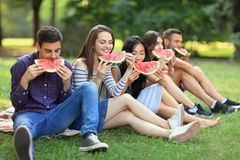 Five beautiful young people eating juicy ripe watermelon outdoor. S. Happy friends sitting on grass and bite off piece of fruit with pleasure. Healthy lifestyle Royalty Free Stock Images