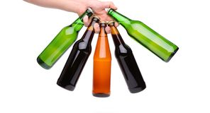 Five beer bottle hand. Five beer bottle in a hand on the white background Royalty Free Stock Photos