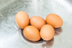 Five big brown eggs lay on metal sink in kitchen for washing and royalty free stock photography