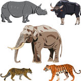 Five Big Wild Beasts In India. Stock Photo