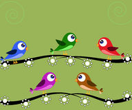 Five birds green Royalty Free Stock Photos