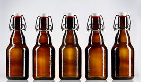 Five blank glass bottles of beer Stock Image