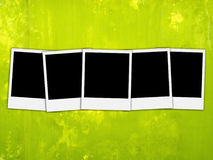 Five Blank Photos on Green Background. Five empty polaroids on a bright green background. A great frame for your images. Please visit my portfolio for more Royalty Free Stock Image