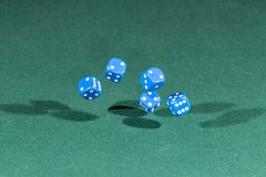 Five blue dices falling on a green table. Five blue dices falling on a isolated green table stock photography