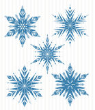 Five blue snowflakes Stock Photography