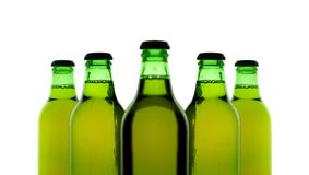 Five bottles of beer. Bottles of beer over white Stock Image