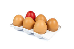 Five Brown Eggs and One Red Egg in a White Plastic Package Isolated on White. Background Stock Photography