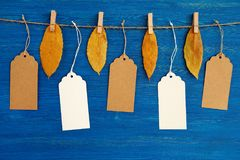 Brown and white blank paper price tags or labels set hanging on a rope with dry yellow autumn leaves on the blue wooden background. Five brown and white blank royalty free stock images