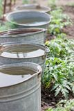 Five buckets with water Stock Images