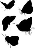 Five Butterfly Silhouettes Stock Photos